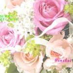 誕生花 : ばら・ピンク