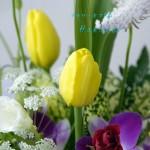 誕生花:チューリップ